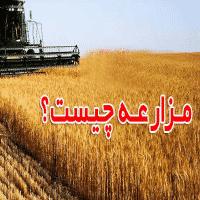 عقد مزارعه-aghde mozaree